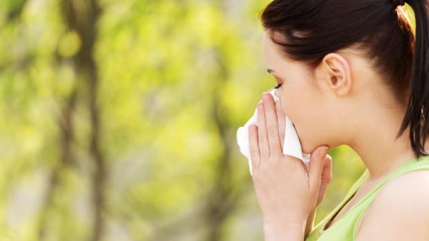 Cómo Protegerse De las Alergias