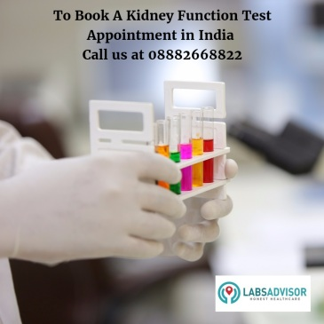 Book Kidney Function Test in Delhi